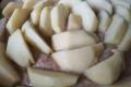 Apfelschnitze