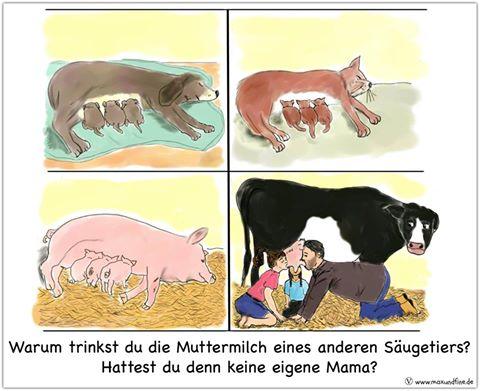 Muttermilch eines anderen Säugetiers