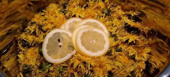 Veganen Honig selber machen